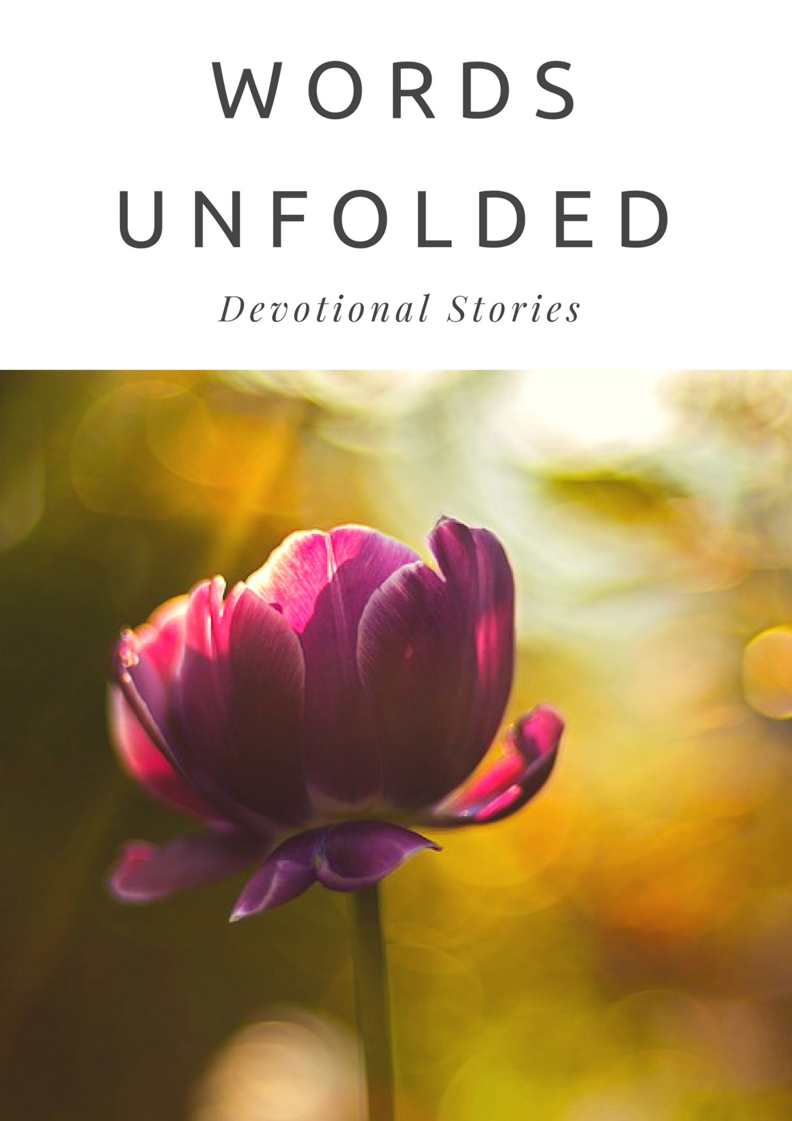 Words Unfolded ebook cover